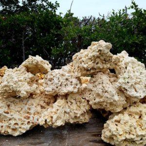 DRY Reef Rock