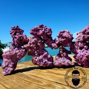 Purple Dry Reef Rock