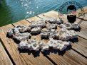 5lbs. ARK Ultra Thin Dry Shelf Rock Aragonite, Lightweight, Porous, Aquariums